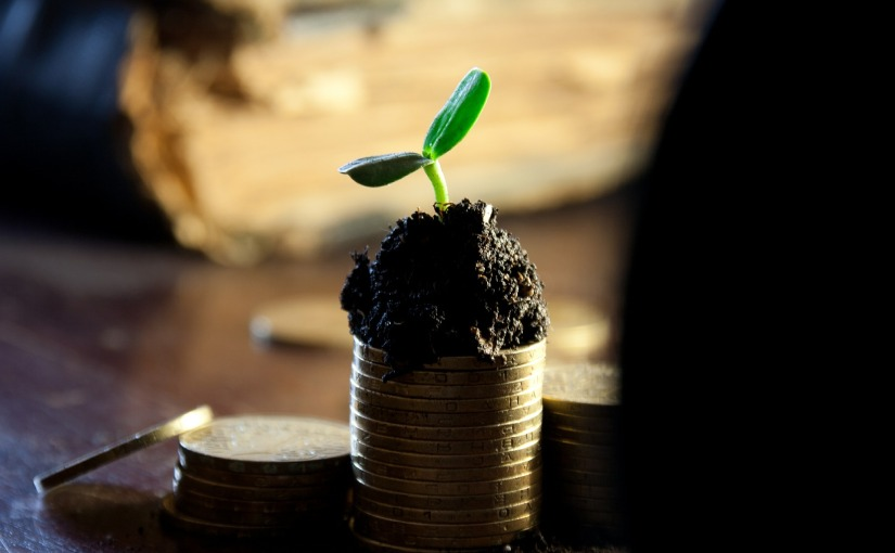 Mehr Geld verdienen vs. eine bessere Rendite erzielen – GrößererFortschritt?