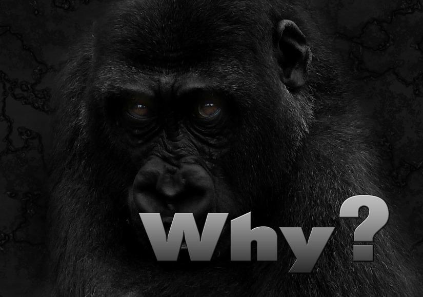 Warum möchtest du finanziell freiwerden?