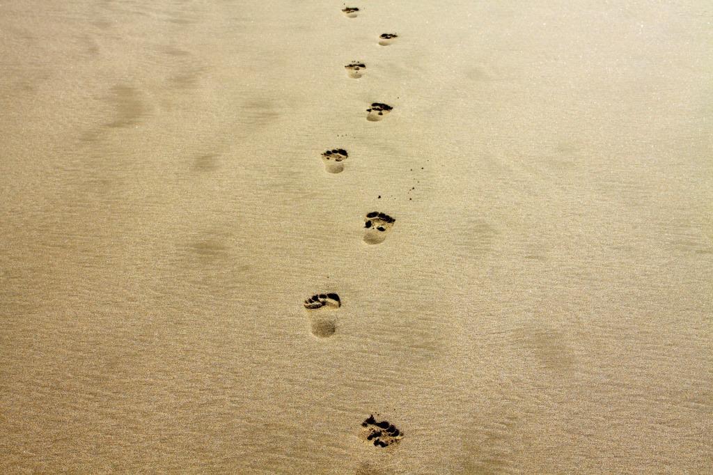 footprint-1021452_1920